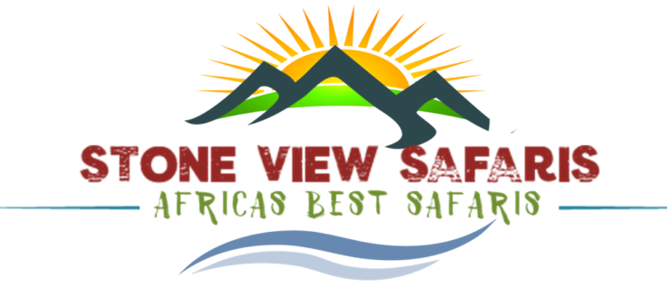 Stone View Safaris